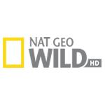 NG wild